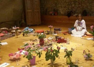 Stage Médecine des Roses